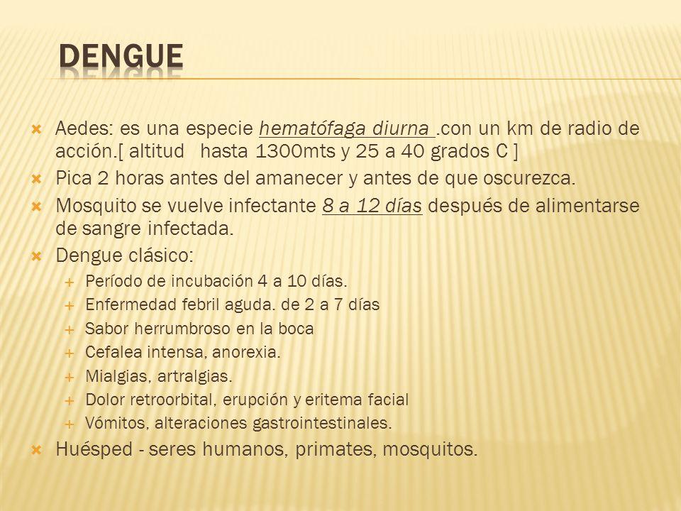 Dengue Aedes: es una especie hematófaga diurna .con un km de radio de acción.[ altitud hasta 1300mts y 25 a 40 grados C ]